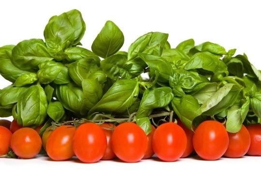Molho rápido de tomates