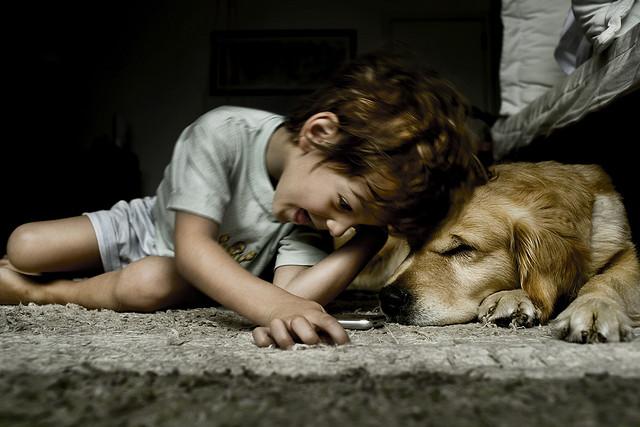 melhores raças de cães para crianças